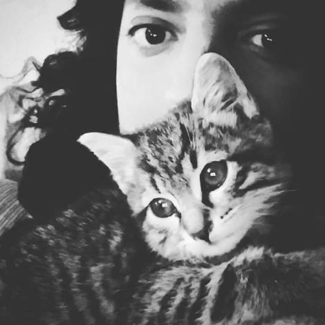 הבית של דוד בערד – תכשיטים, חתולים, תה וסימפטיה